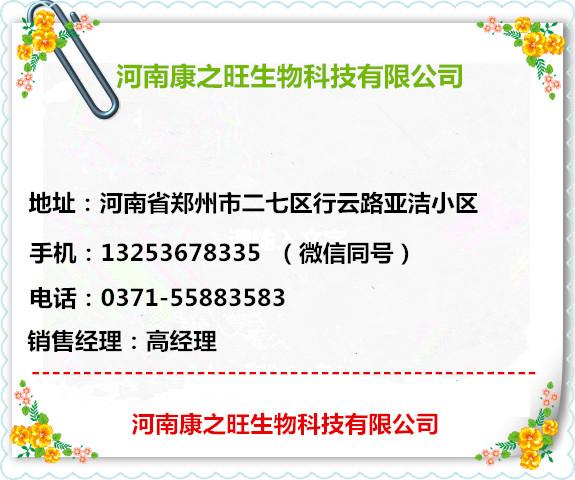名片13253678335.jpg